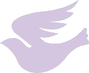 Purple Dove Studio